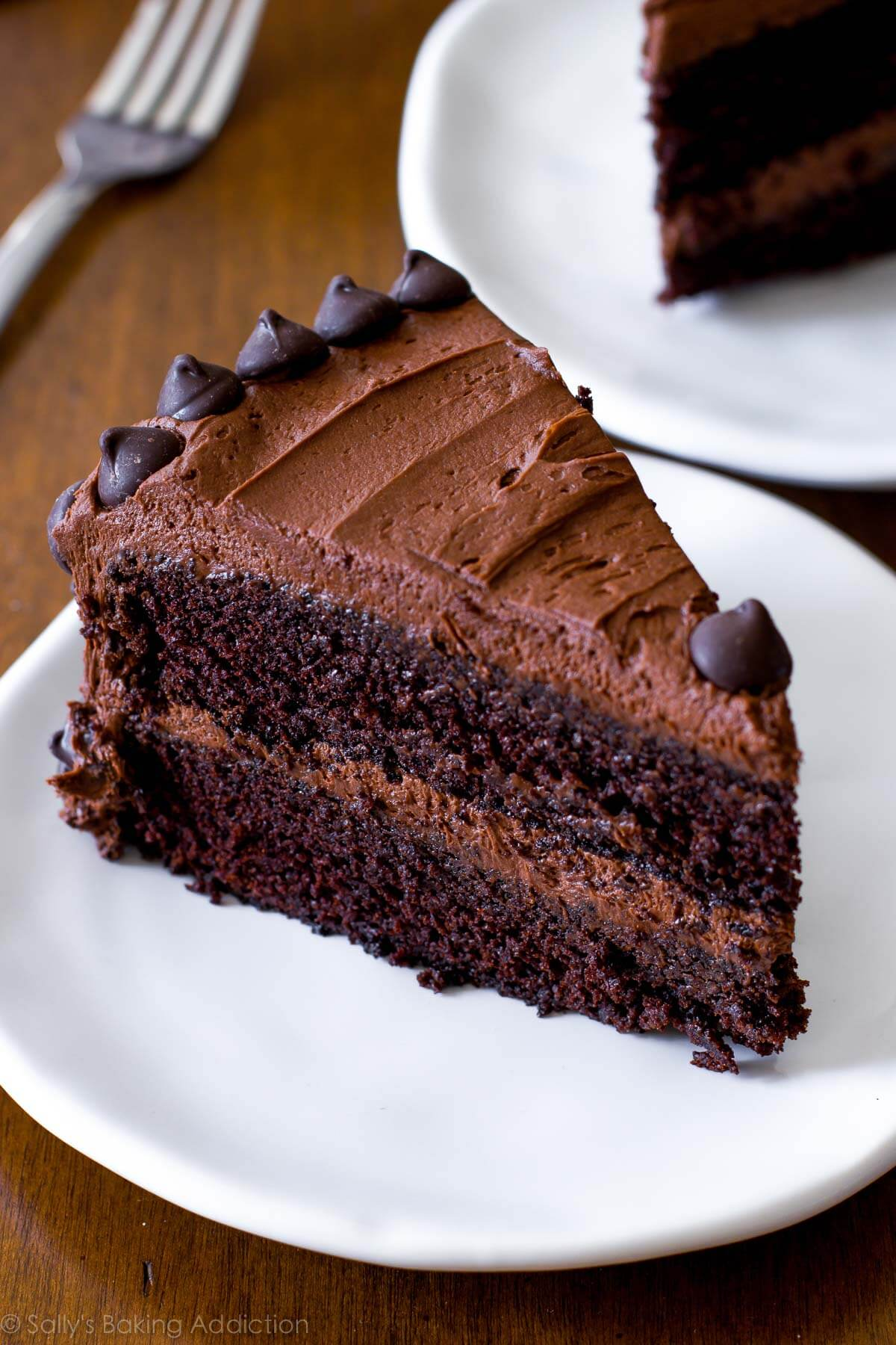 Triple Chocolate Layer Cake. The fudgiest homemade chocolate cake ever! Recipe on sallysbakingaddiction.com