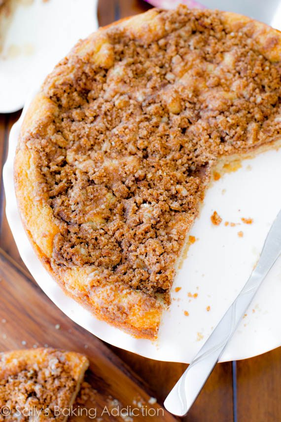A soft, tender, easy-to-make coffee cake, heavy on the crumbs! Recipe at sallysbakingaddiction.com