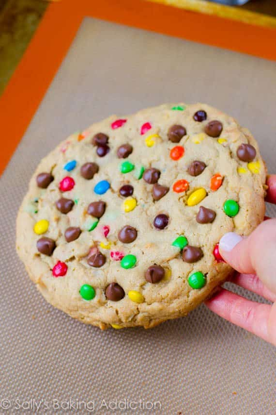 One Giant Monster Peanut Butter Cookie-3