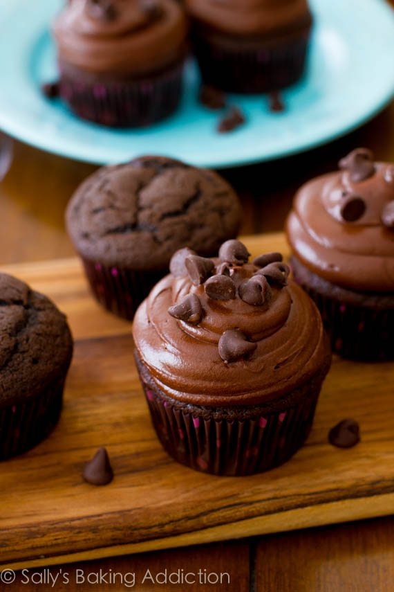 My Favorite Chocolate Cupcakes with Dark Chocolate Frosting - chocolate lovers only! Recipe at sallysbakingaddiction.com