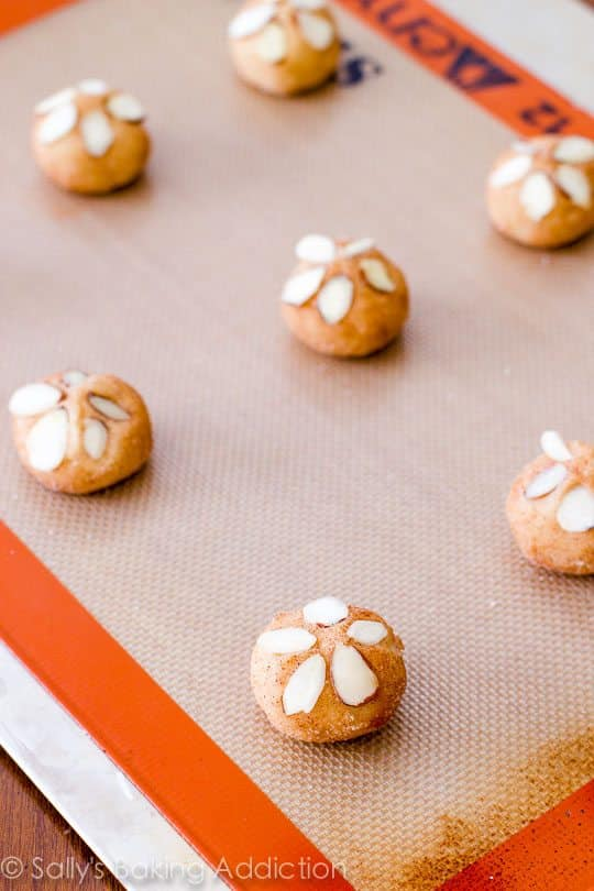 Sweet cinnamon sugar cookies topped with sliced almonds to replicate adorable little beach sand dollars!