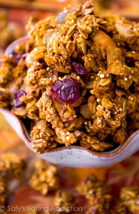 Pumpkin Spice Crunchy Granola - A super crunchy and flavorful pumpkin spiced granola, sweetened with maple syrup, a touch of brown sugar, and loaded with fall goodies like pecans, dried cranberries, and pumpkin seeds.