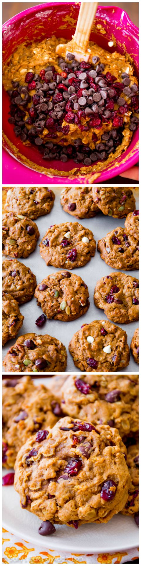 These are my favorite pumpkin cookies! Filled with oats, chocolate, and cranberries!
