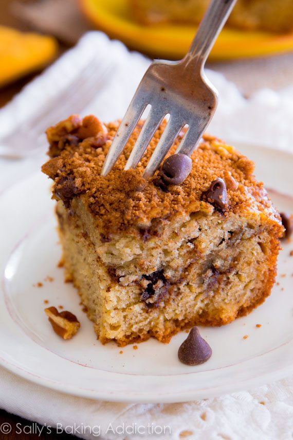 Banana Chocolate Chip Crumb Cake - super moist and decadent. There won't be a crumb left!