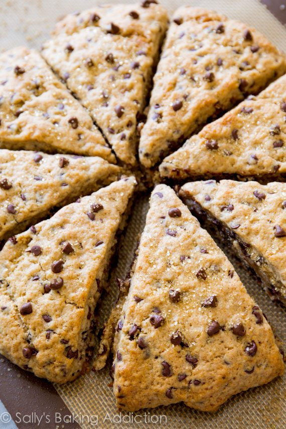 Melt-in-your-mouth chocolate chip scones! Tender and moist inside with a slight crunch on the edges. By sallysbakingaddiction.com