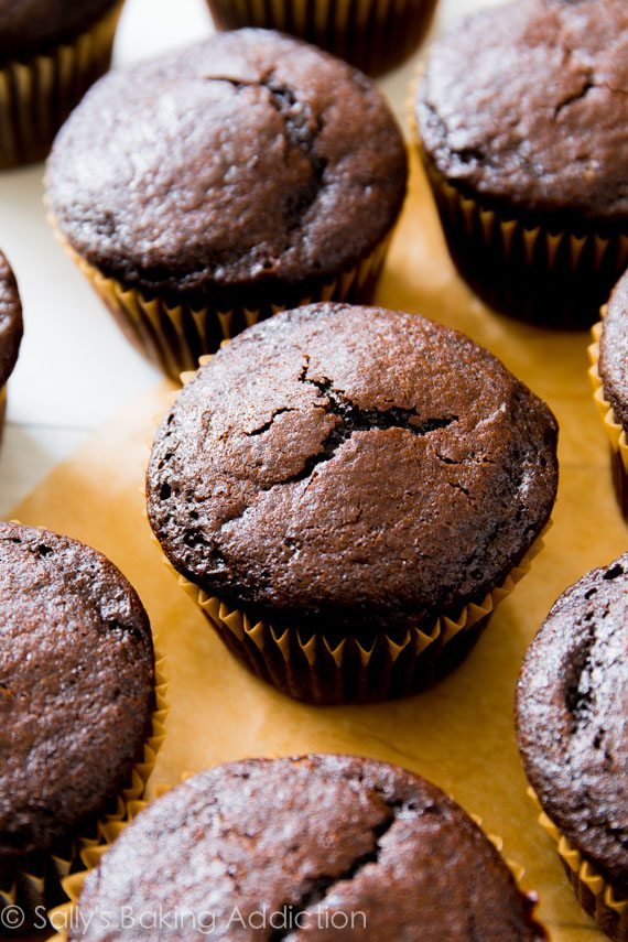The most flavorful, moist chocolate cupcakes I've ever made!