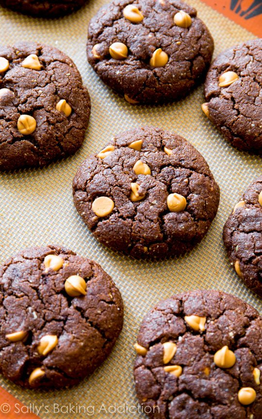 Flourless Peanut Butter Brownie Cookies. | Sally's Baking Addiction