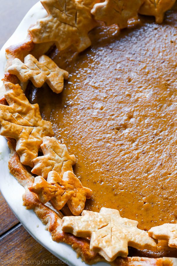 Bursting with flavor, this pumpkin pie recipe is my very favorite. It's rich, smooth, thick, and tastes incredible on my homemade pie crust! sallysbakingaddiction.com