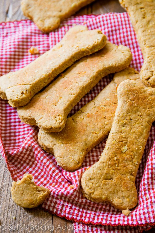 Homemade soft dog treats with peanut butter, carrot, oats, and whole wheat flour. FUN and easy to make!