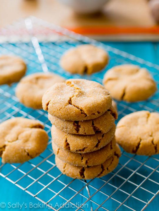 Gingersnaps from Sally's Baking Addiction Cookbook