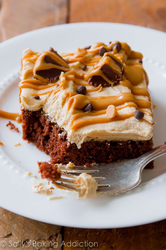 chocolate sheet cake topped with the creamiest peanut butter frosting ...