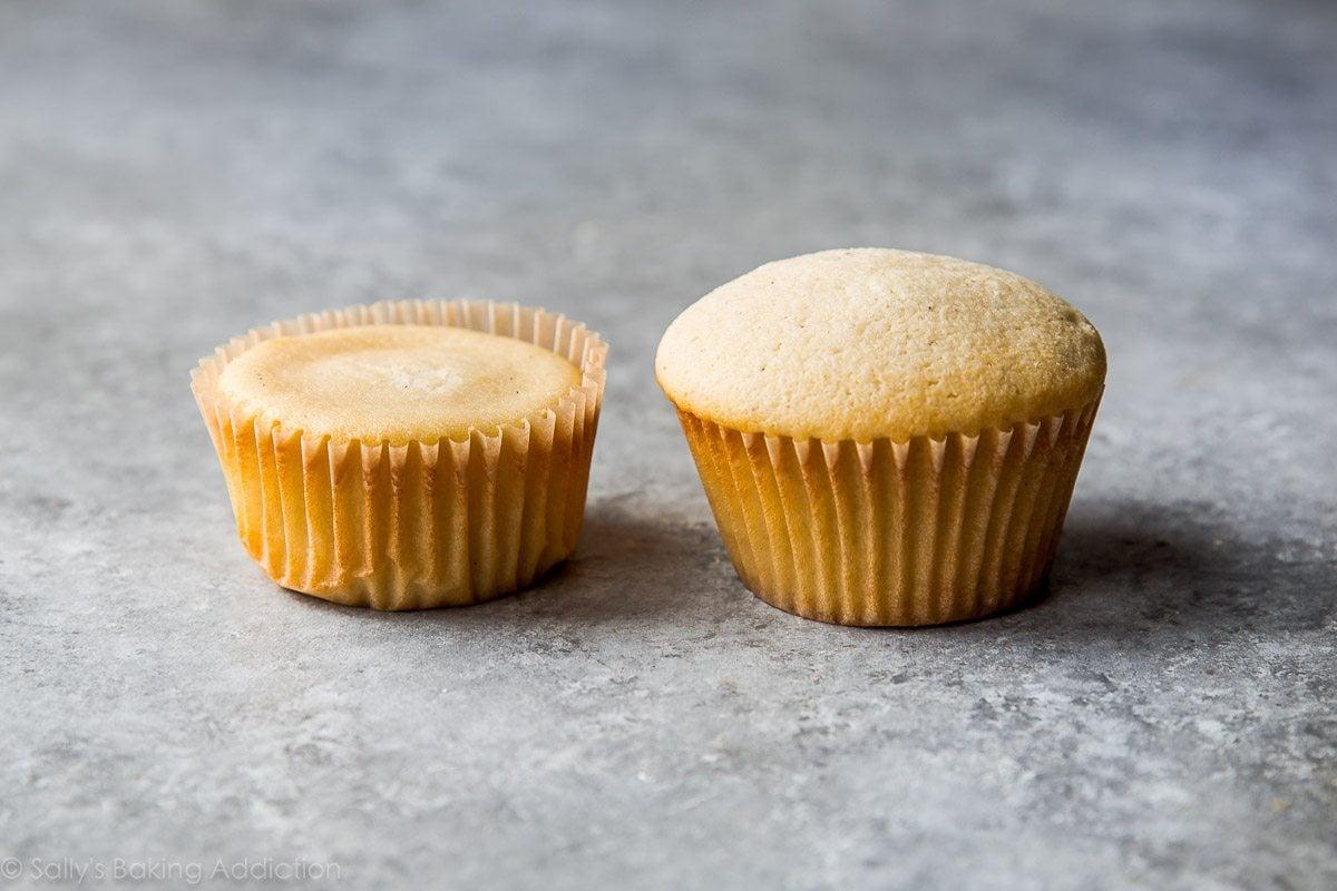 Simply perfect vanilla cupcakes on sallysbakingaddiction.com