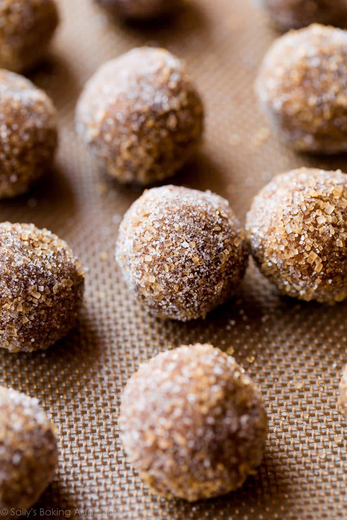 Crisp molasses cookie dough on sallysbakingaddiction.com