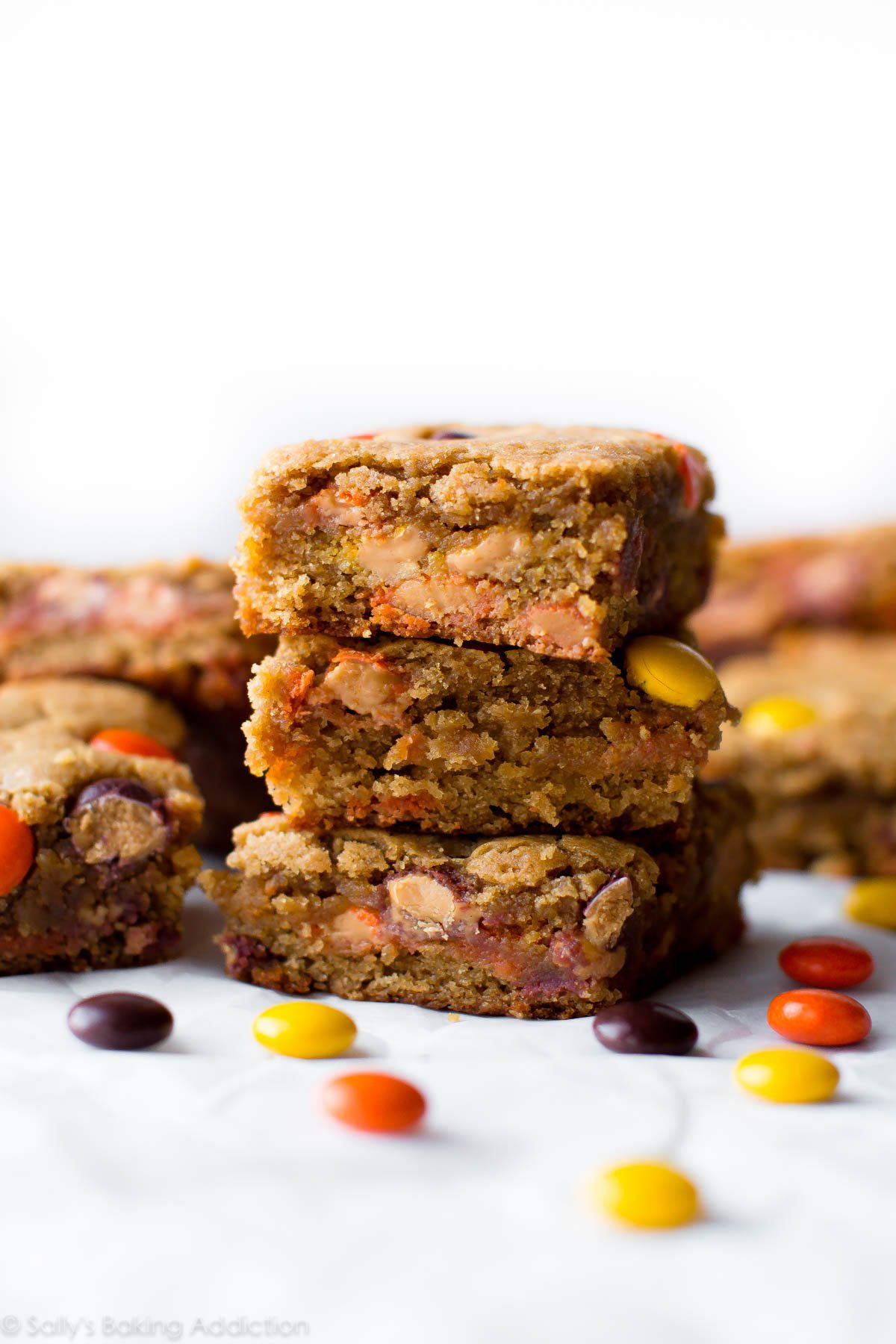 Super soft and simple peanut butter blondies filled with Reese's Pieces! Recipe on sallysbakingaddiction.com
