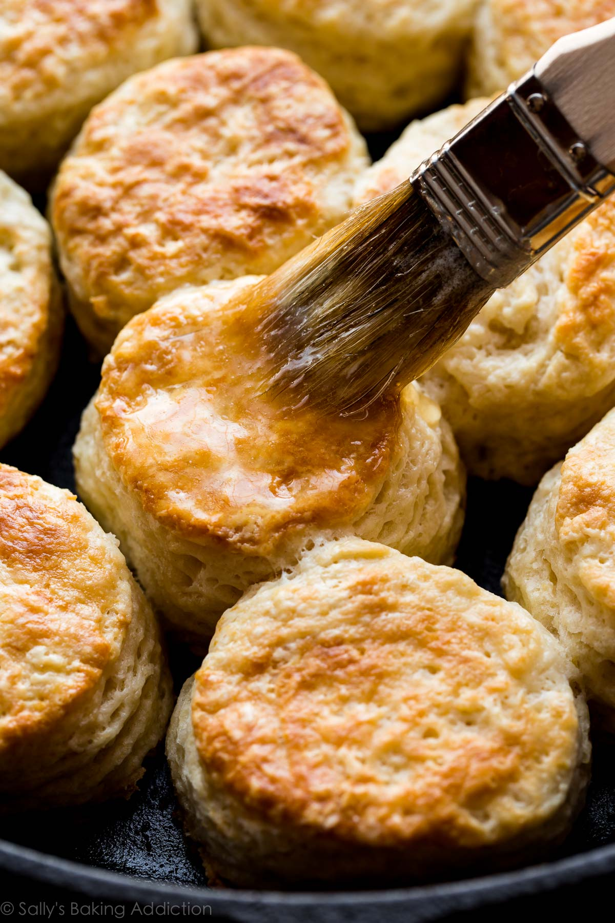 You only need 6 ingredients and about 30 minutes to whip up these ultra buttery golden brown mega flaky buttermilk biscuits! Recipe on sallysbakingaddiction.com