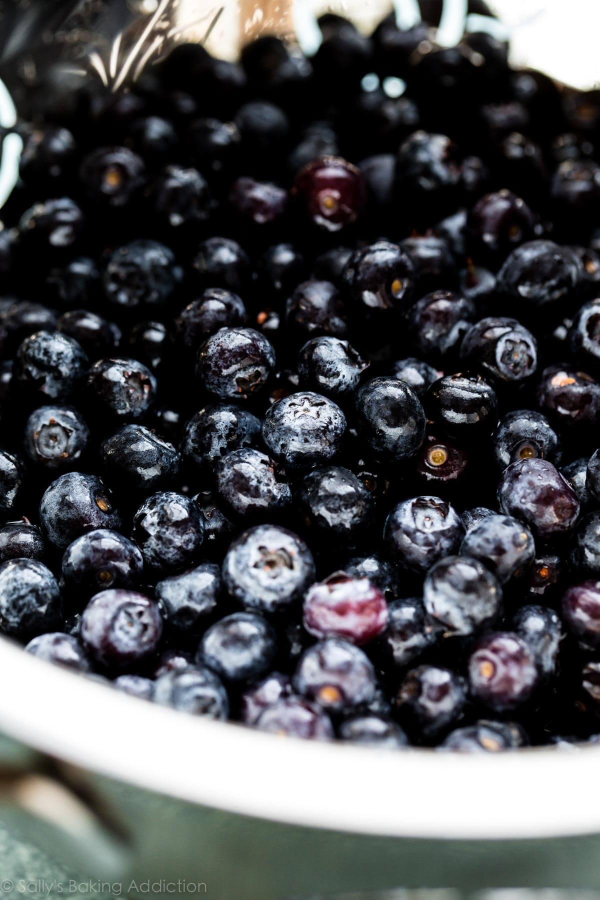 Blueberries for blueberry lemon icebox cake on sallysbakingaddiction.com