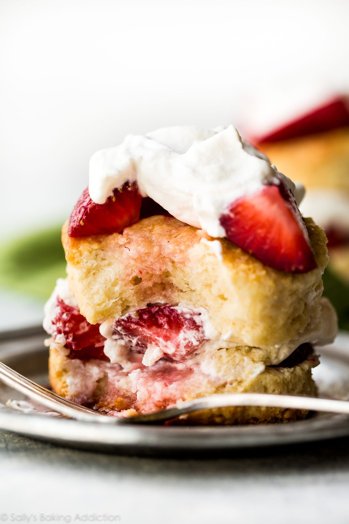 How to make strawberry shortcake at home! Sweet easy biscuits and whipped cream from scratch! Recipe on sallysbakingaddiction.com