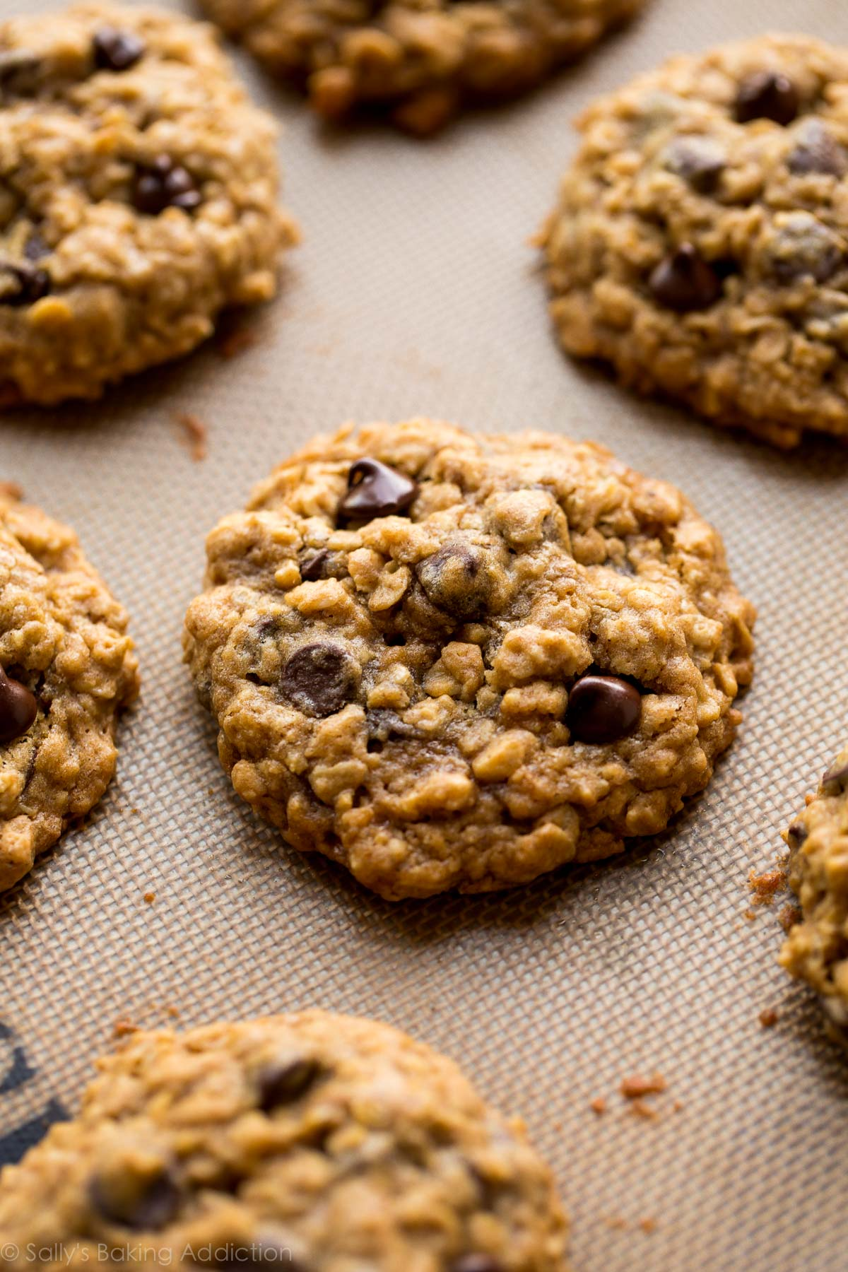The best chocolate chip cookies! These soft & chewy oatmeal chocolate chip cookies have a few tricks to make them undeniably delicious, every time. Recipe on sallysbakingaddiction.com