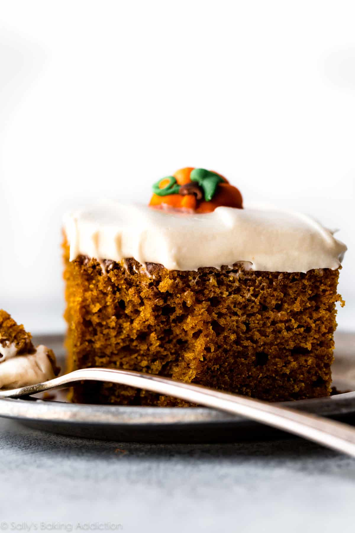 This is the BEST pumpkin cake I've ever had! Supremely moist, soft, rich, and spiced with pumpkin spice flavor! Recipe on sallysbakingaddiction.com