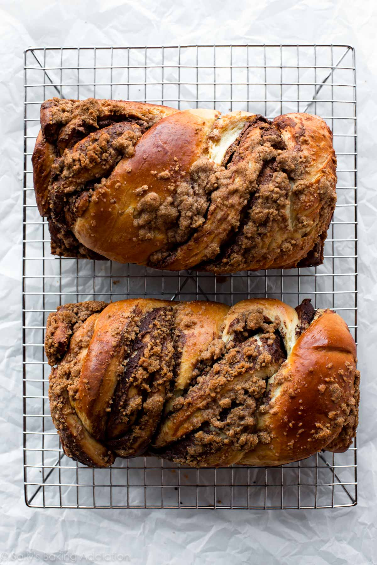 Deliciously sweet and addictive bread swirled with Nutella and topped with buttery cinnamon crumbles! Nutella babka recipe on sallysbakingaddiction.com