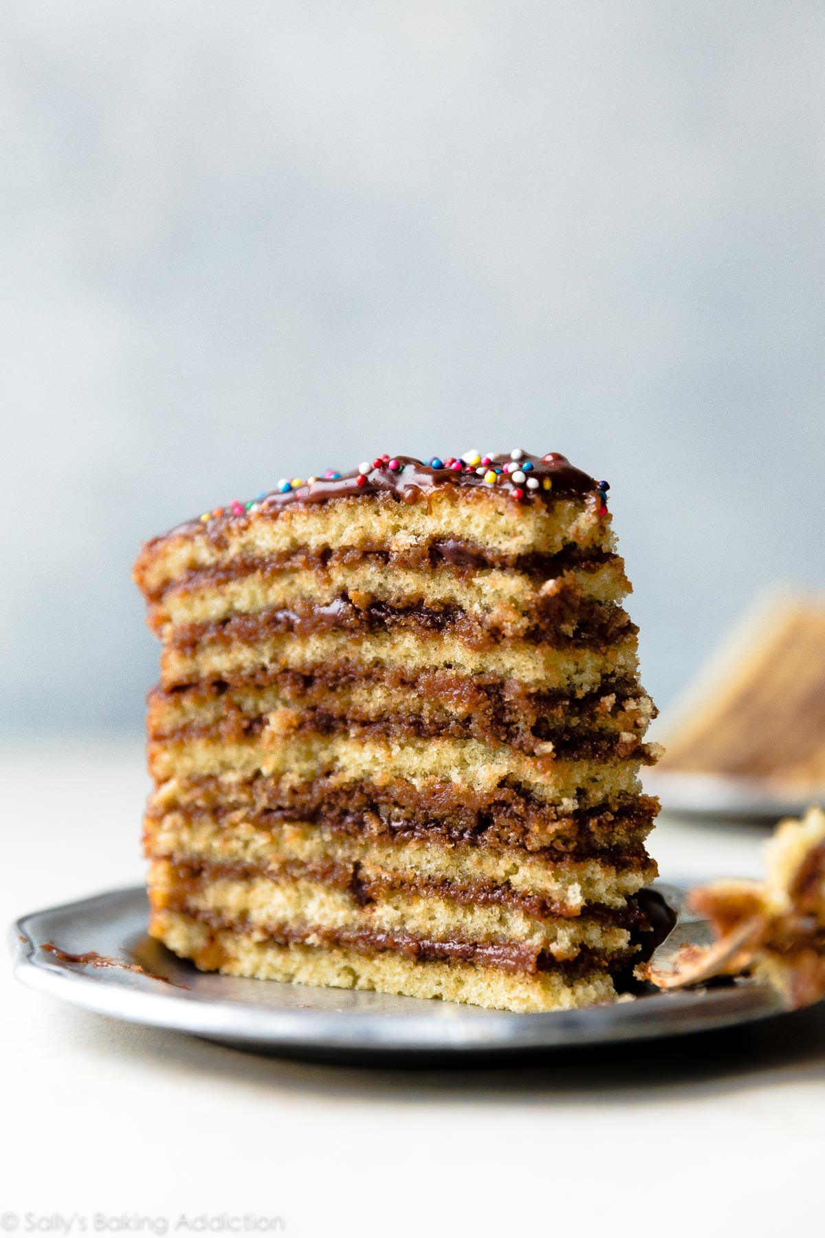 Super moist Smith Island Cake with 9 delicious yellow cake layers and chocolate fudge icing that seeps down into every layer. Surprisingly simple, especially if you have 3 cake pans! Recipe on sallysbakingaddiction.com